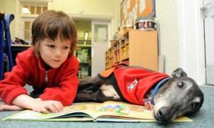 Listening dog helps children read