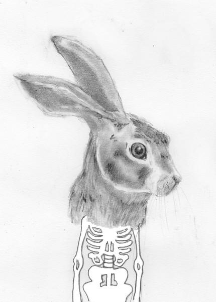rabbit-jason-whitman